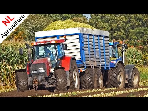 Harvesting mais in the mud | 2x Claas Jaguar 950 + New Holland T7.270 | Modderen | Heerikhuize | NL.
