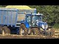2x Claas Jaguar 950 | Harvesting mais in the mud | Berkhof | Heerikhuize...