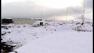 Харьковчане войдут в состав сезонной экспедиции в Антарктику