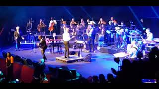 David Rodigan 40th anniversary gig live at the Royal Albert Hall