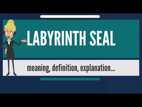 What Is LABYRINTH SEAL? What Does LABYRINTH SEAL Mean? LABYRINTH SEAL Meaning & Explanation Mp3