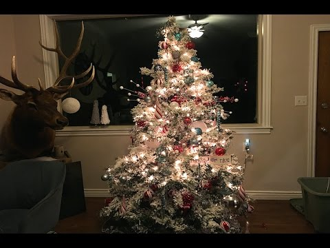 WE PUT OUR CHRISTMAS TREE UP