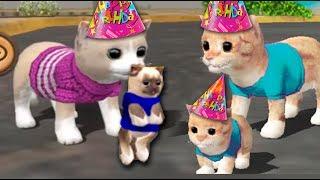 СИМУЛЯТОР Маленького КОТЕНКА #2 напал МЕДВЕДЬ КОШКА родила котенка видео для детей  #Валеришка