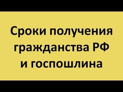 Сроки получения гражданства РФ и госпошлина