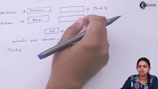 Visual Basic Programing Variable, Constants, Arrays, Operators - Visual Basic