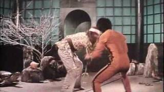 Bruce Lee   Enter The Game Of Death  (Part 4 Of 6)