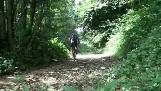preview picture of video 'La Via Sacra 27 Agosto 2014'
