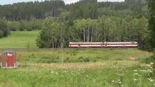 preview picture of video 'ČD Tschechischer Dieseltriebzug bei Horni Poustevna (Obereinsiedel)'