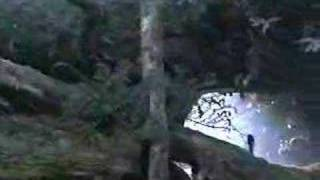 Jurassic  Argyle Park - Violence