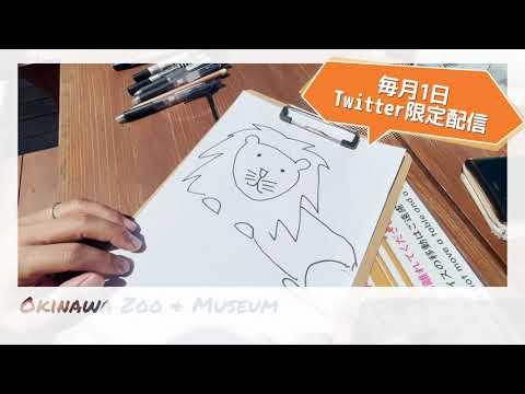 「ハイサイ!飼育員」沖縄こどもの国飼育員が描く4コマ漫画がはじまりました!