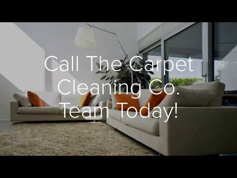 Cat Amp Dog Carpet Pet Urine Removal Top Choice Reviews