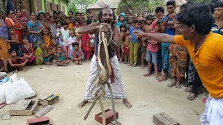 Amazing Snake Playing | Poisonous Snake Cobra & Rat Snake Played By Snake Charmers