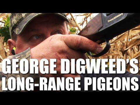 George Digweed shoots Long-Range Pigeons
