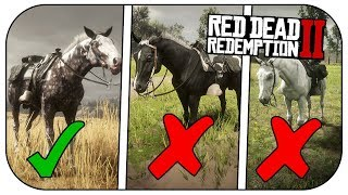 How to get the MISSOURI FOX TROTTER! (FASTEST Horse In RED DEAD REDEMPTION 2!)