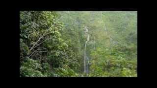preview picture of video 'Ile de la Réunion - Salazie - Cascades et la rivière'