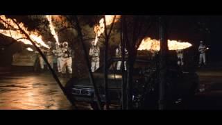 The Swarm (1978) Video