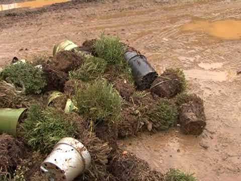 ALBENGA: AGRICOLTORI ANCORA IN ATTESA DEI RISARCIMENTI PER ALLUVIONE 2014