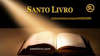 SANTO LIVRO . COM - HOMILIAS de PADRE BETO