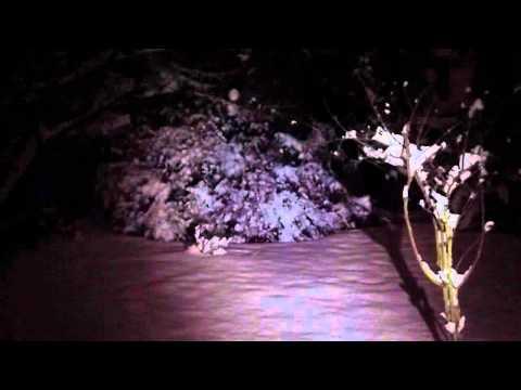 Zweibrüder LED LENSER M14 Profi-Taschenlampe Test & Video - [Trigami-Review]