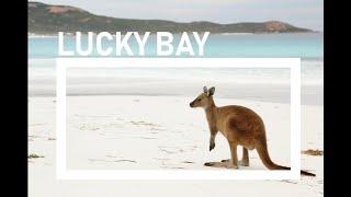 Lucky Bay - Australias Whitest Beach - Australia Travel Documentary
