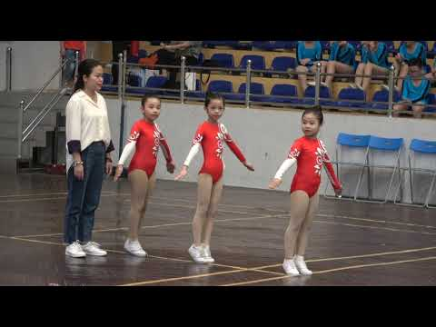 TH Nguyễn Tri Phương - Aerobic TP Hà Nội 2019 - Huy chương đồng nội dung 3 người lứa tuổi 6 - 8