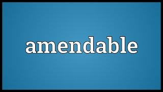 Amendable Meaning