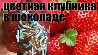 цветная клубника в шоколаде #клубника Шоколадный десерт!
