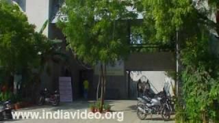 Education, Gujarat