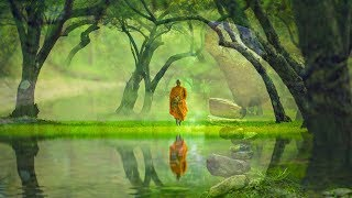 528Hz Music For The Soul ➤ Tones Of Healing, Harmony & Mindfulness - Light Music For Tranquility
