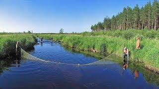 #16 Необычные случаи на рыбалке!