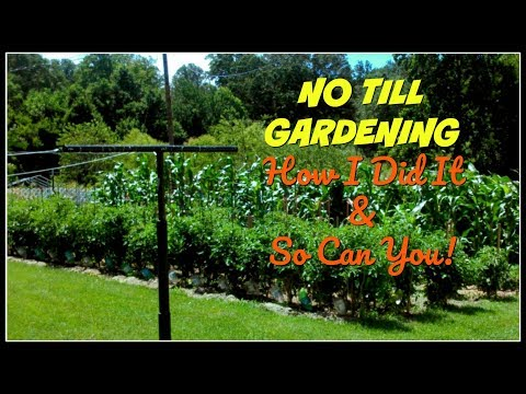 NO TILL GARDENING~How I Did It & So Can You!