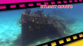 Stuart Cove's, Nassau