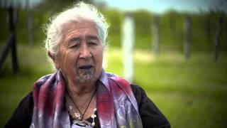 In Their Words: Te Tira Whakaemi Mandated Representatives