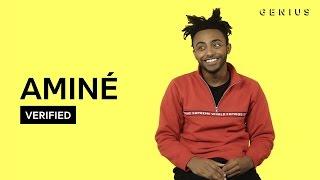 "Aminé ""Caroline"" Official Lyrics & Meaning | Verified"