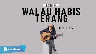 Download lagu Walau Habis Terang Peterpan Felix Irwan Mp3