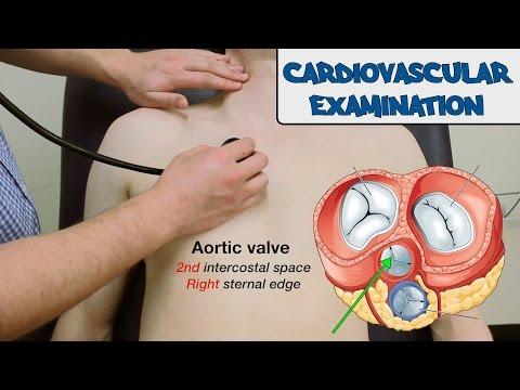 Podstawowe badanie układu sercowo-naczyniowego