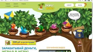 Tropic-Birds.biz Экономическая Игра Без Баллов Платит 7 Месяцев