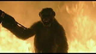 Планета обезьян: Революция. Обезьяны захватывают город людей