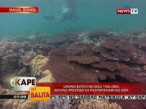 Ang pinakamahusay na lunas para sa mga bulate at mga parasito para sa mga bata