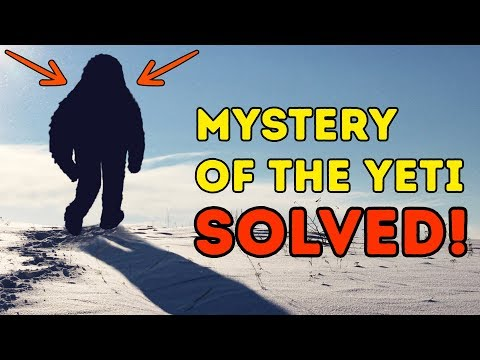 Scientists Have Shown Who The Yeti Is