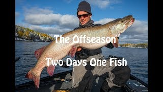 The Offseason - Two Days, One Fish - October Musky Hunting
