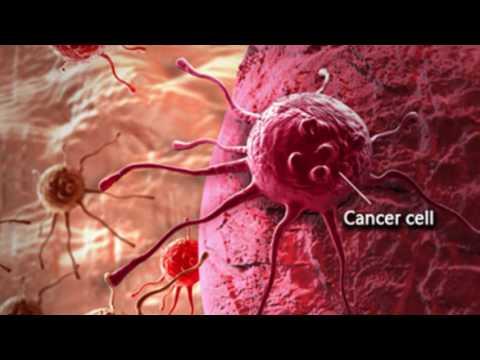 Traitement azote papillomavirus