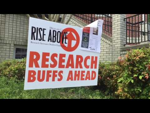 RISE Above Research Conference 2017