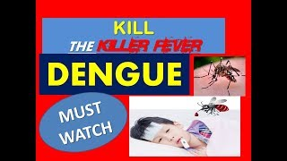 Dengue fever Causes, Symptoms, Treatment and prevention tips in Hindi by defeat diabetes