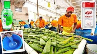 देखिये Factory में कैसे बनाया जाता है सैनीटाइझर ( SANITIZER ) || 7 Products Manufacturing Machines