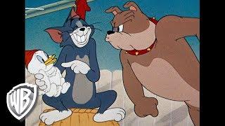 Tom et Jerry en Français | Compilation Classique Dessins Animés | Tom, Jerry, et Spike | WB Kids