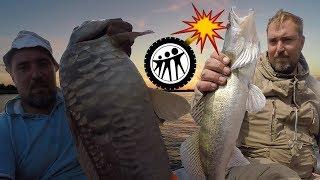 Недорогая рыбалка в астраханской области