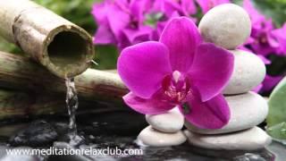 3 HOURS Japanese Zen Garden Music: 50 Shades of Relaxation Music buddha