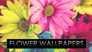 HD Flower Wallpapers Pack #8 !! Download Now !!