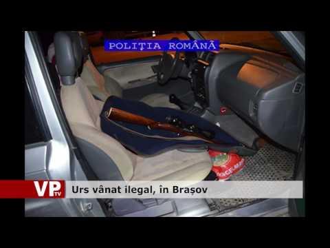Urs vânat ilegal, în Brașov